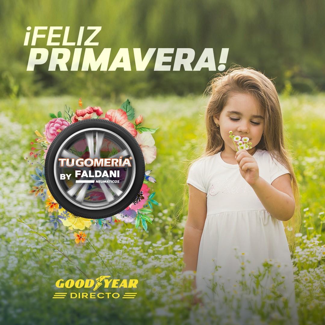 niña en campo con flor